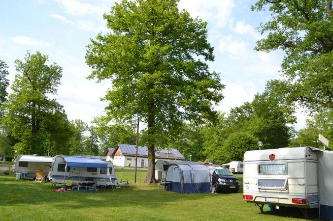 Camping im Eichenwald